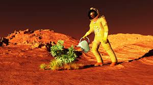 mars cultivate