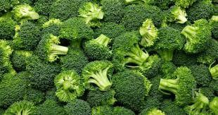climate for broccoli