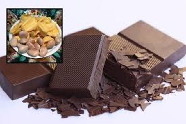 jackfruit chocolate