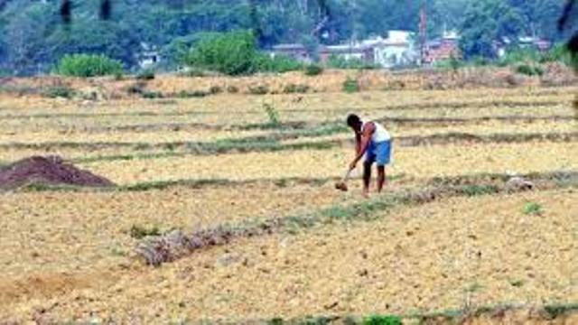 farming hampered